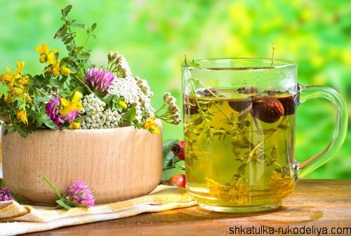 Укрепляем здоровье целебными травами