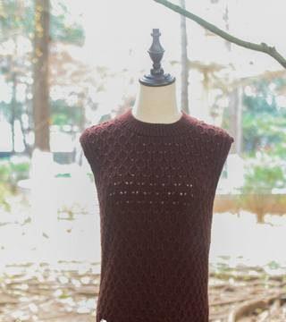 вязание спицами, безрукавка, узор соты, для женщин, схема